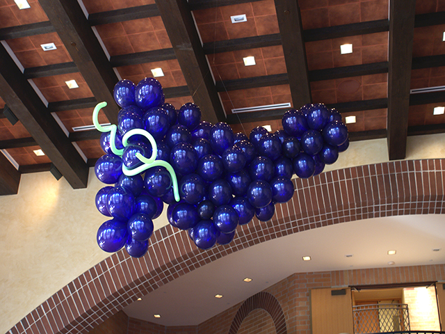 hanging-balloon-grapes21