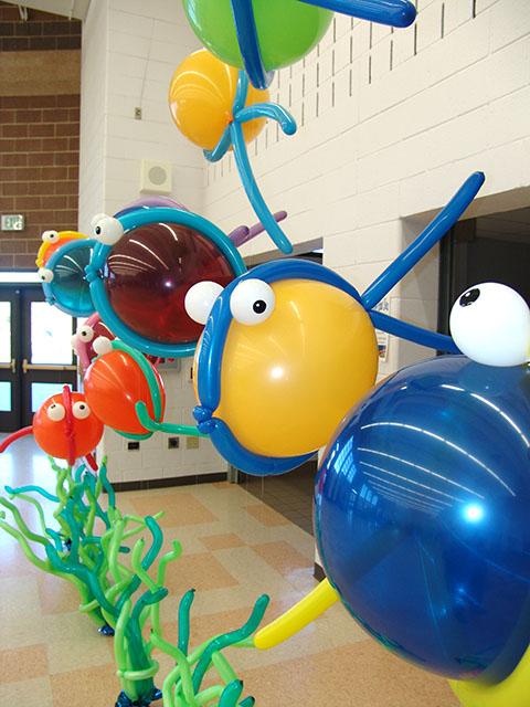tropical-balloon-fish