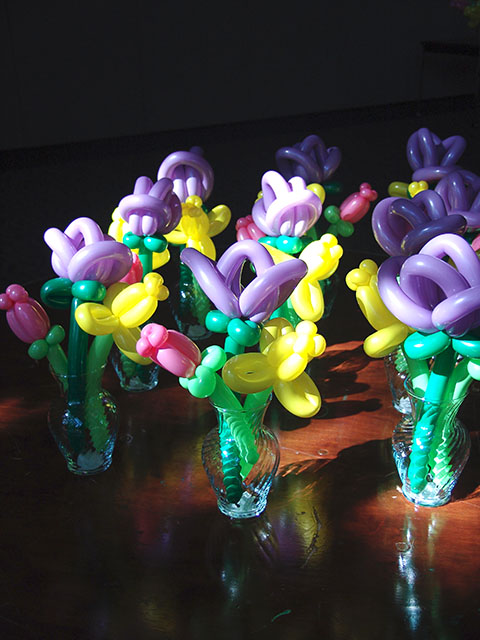 Exotic Balloon Flowers 2